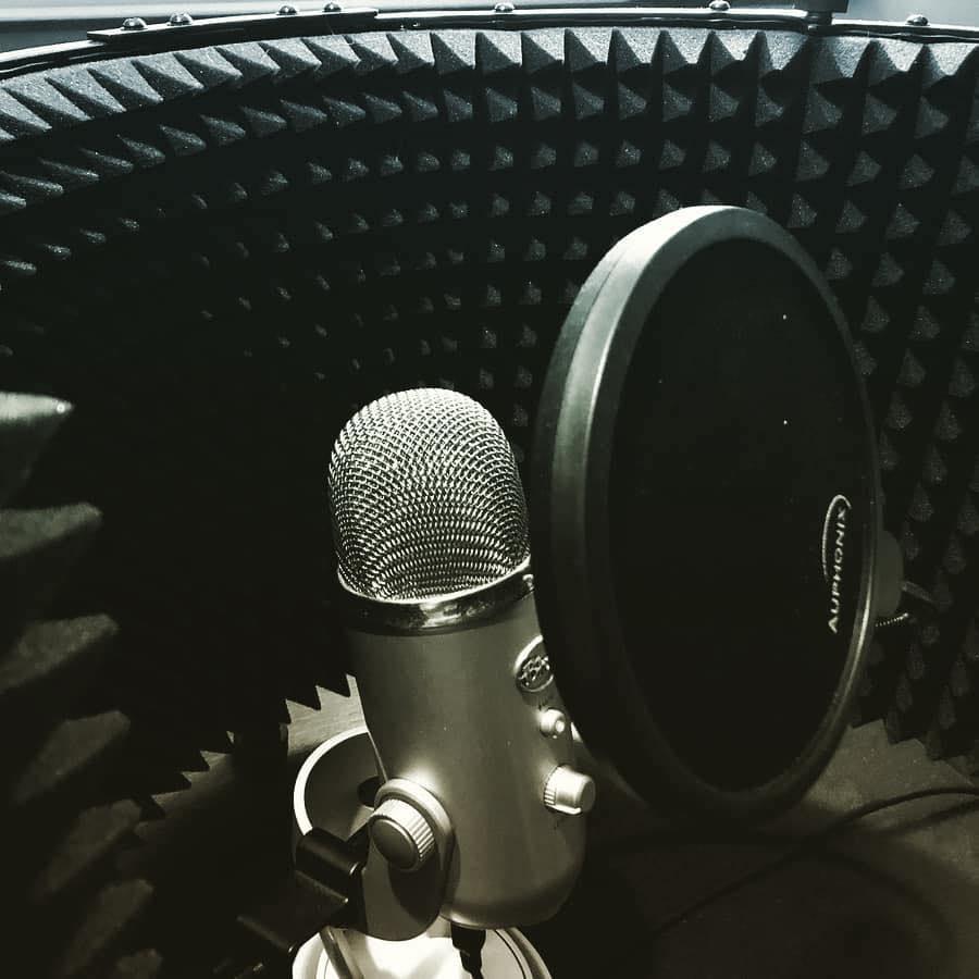 Brian P. Craig – Voice Actor
